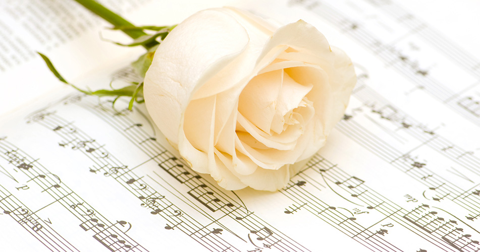 funeral-rose.jpg